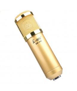 KTV mickrofon