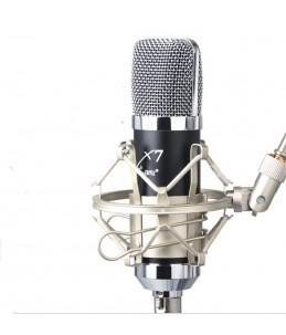 Pro sång mick för mobilen